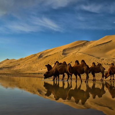 silk-road tours