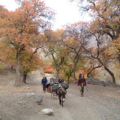 Hiking-in-Arslanbob