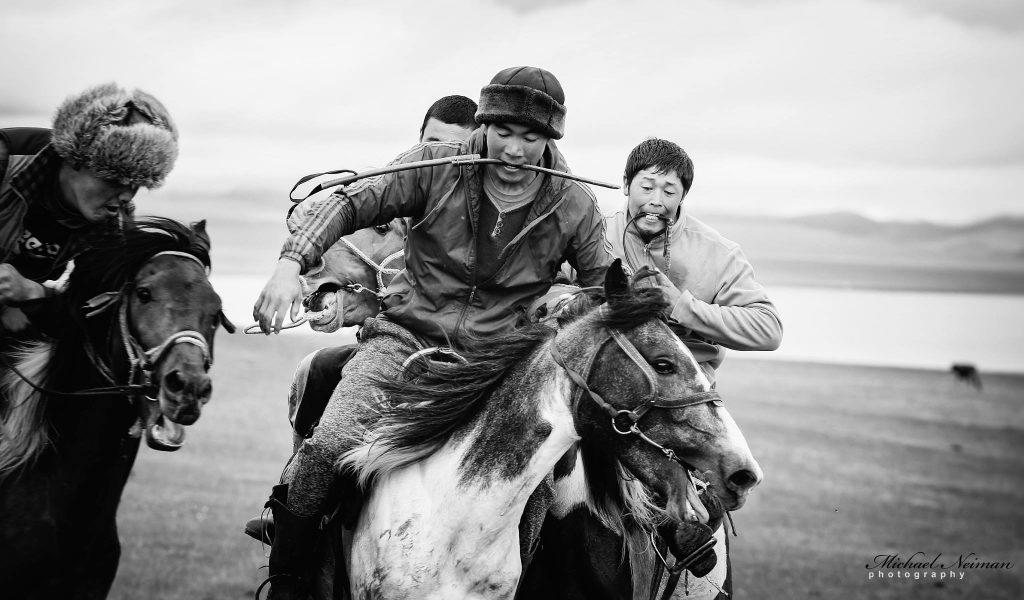 Horse games